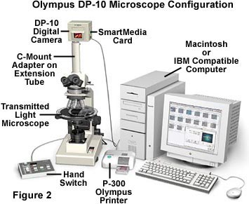olympus dp-10 vintage digital microphotography camera 1998